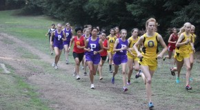 Photo gallery: Cross Country league meet