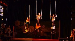 Sophomores star in circus shows, daring acts