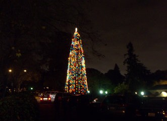 Annual Christmas Tree Lighting ceremony amazes audiences