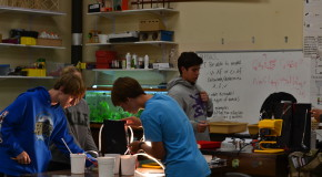 New standards affect science