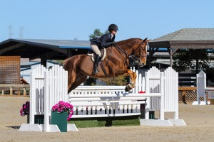 Equestrian Story - Picture of Taylor Beasley and her horse Jaguar