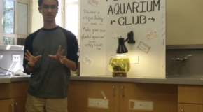 Aquarium club creates ripples among students